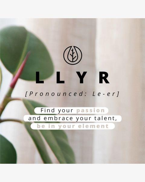 Llyr 2-in-1 Uitneembare Slang Bookcase Galaxy S21 Plus - Donkerrood / Dark Red